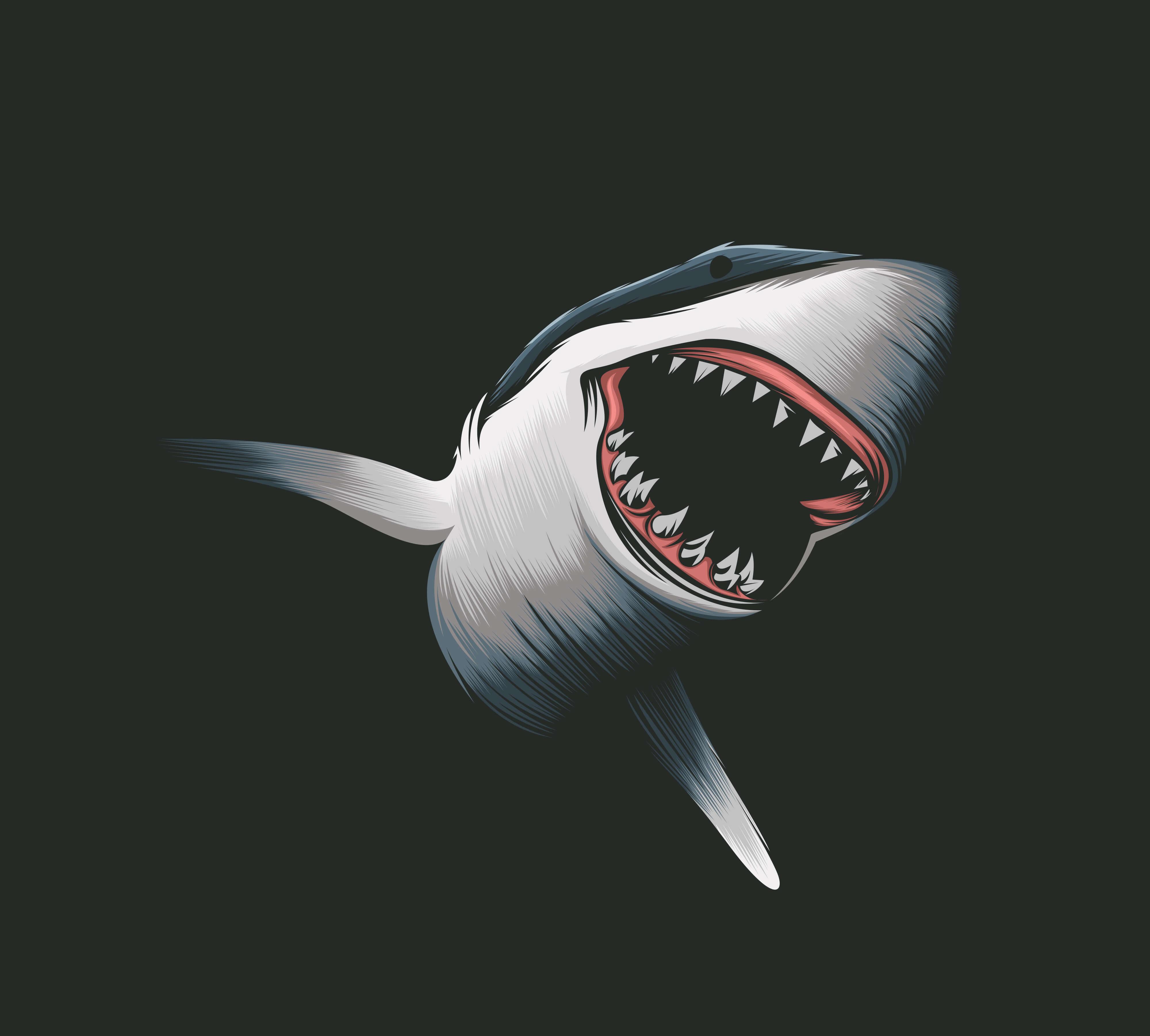 הכריש מריח דם? סטרטאפ בלוקציין גייס 100 אלף דולר בתוכנית טלויזיה SHARK TANK