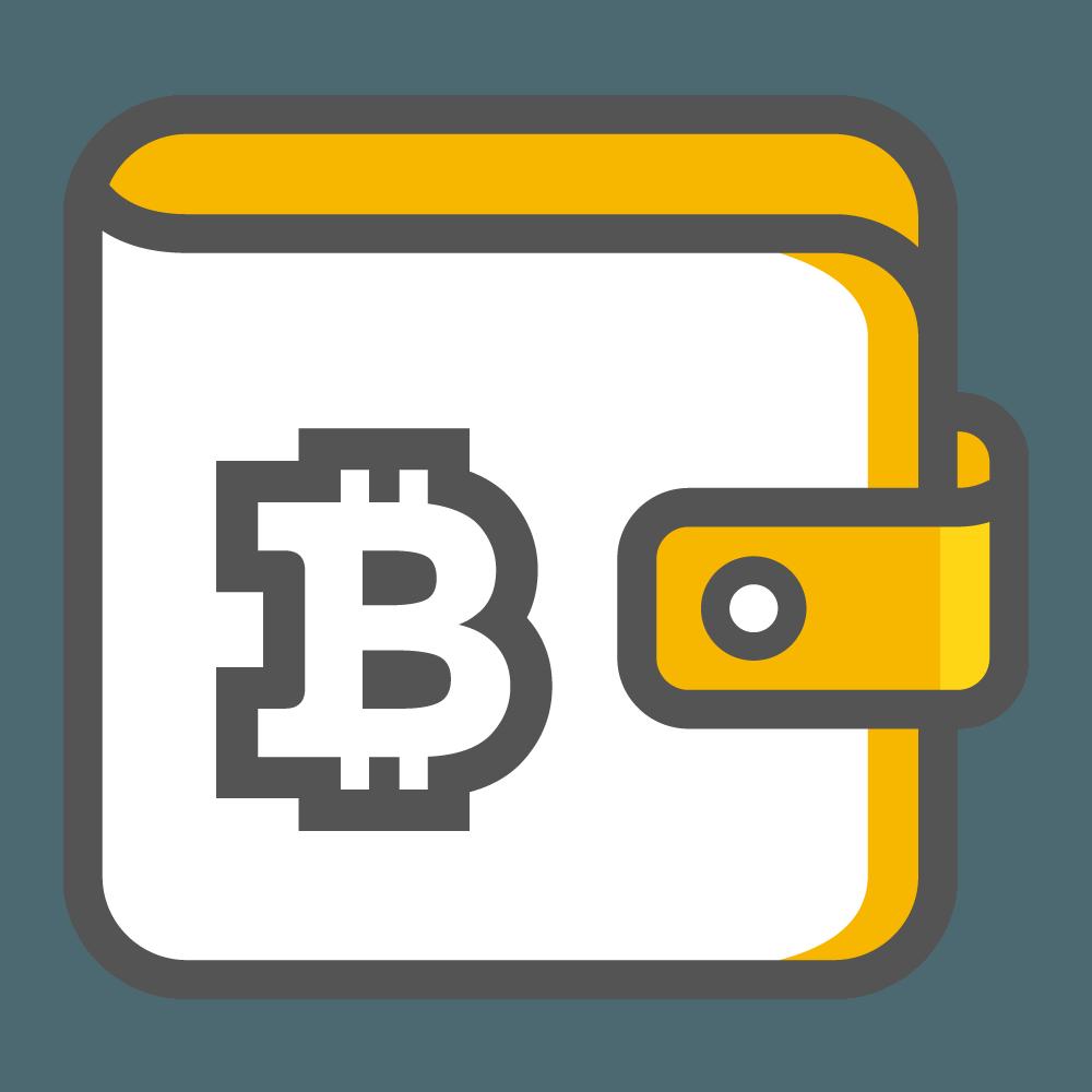 ארנקים דיגיטליים לשמירת קריפטו – המדריך למשתמש המתחיל